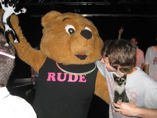 One Rude Bear