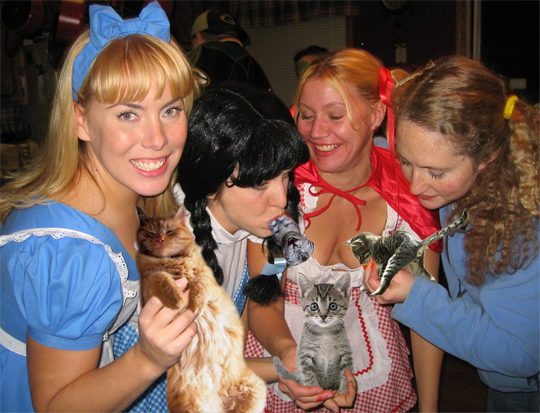 i can't tell if the little boozecat in the girl's mouth is enjoying himself or if he is in immense pain
